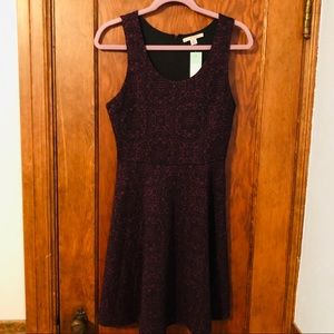 NWT 41 Hawthorne Skater Dress